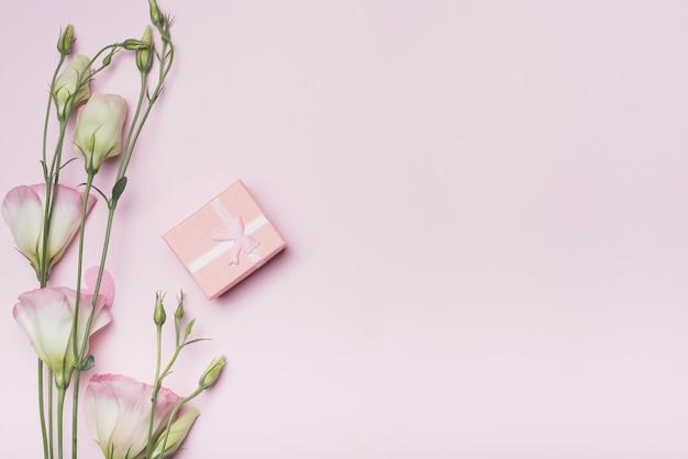 Caixa de presente com flores eustoma em fundo rosa