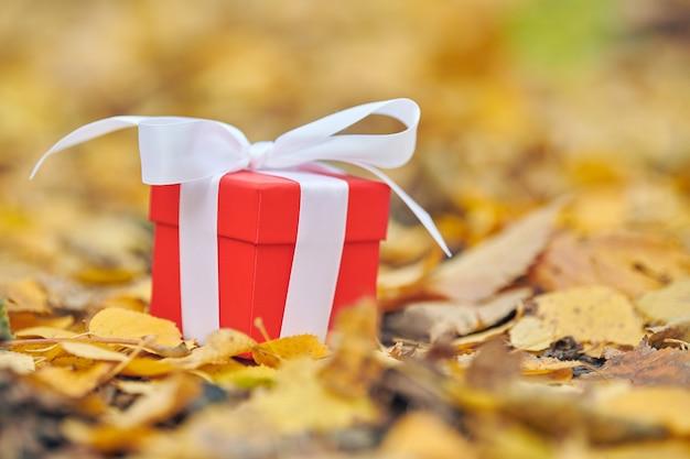 Caixa de presente de outono