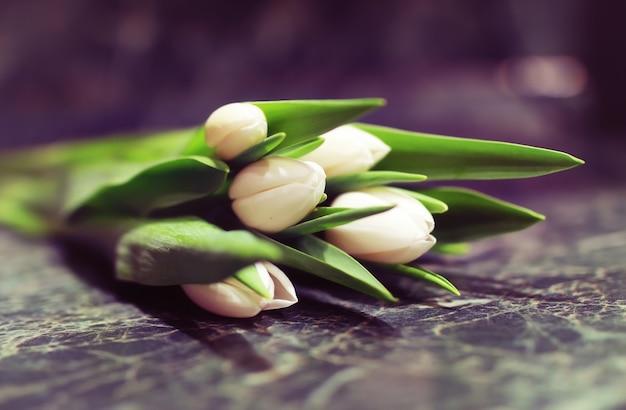 Caixa de presente e tulipas brancas