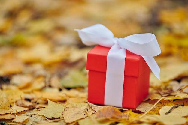 Caixa de presente em folhas de outono