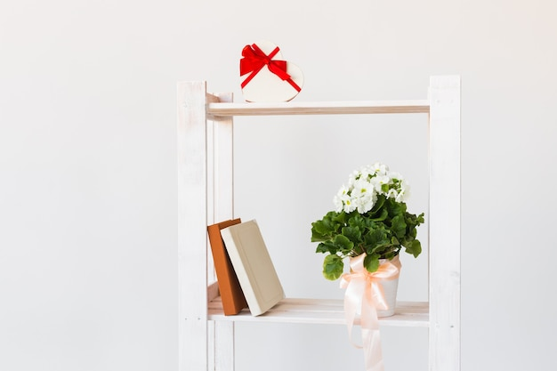 Caixa de presente em forma de coração, livros e planta interna em uma estante
