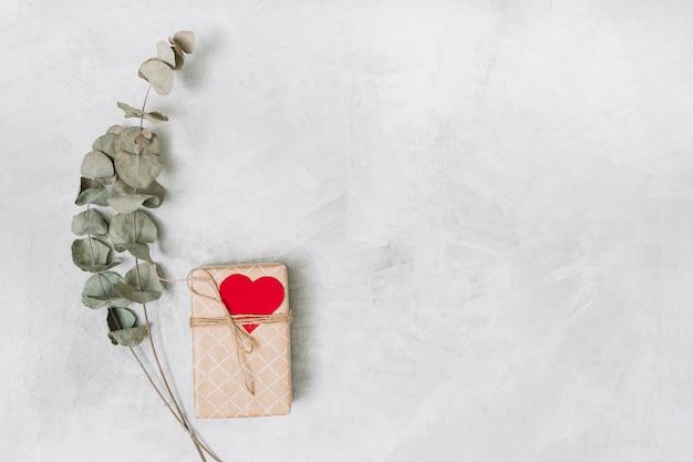 Caixa de presente no envoltório com coração de ornamento perto de galhos de plantas