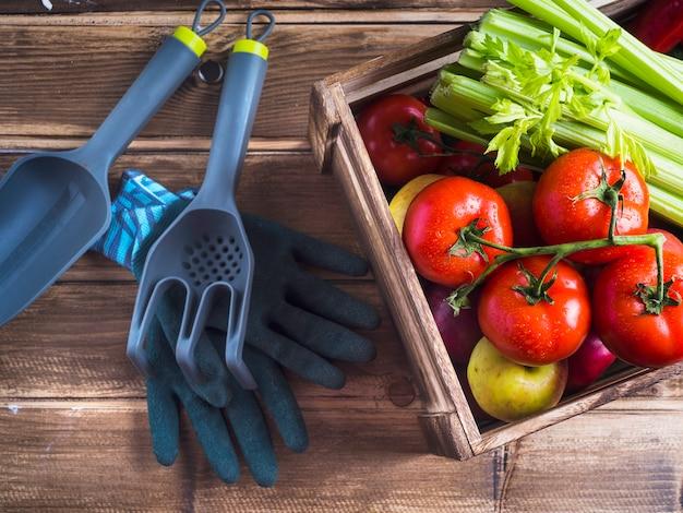 Caixa de vegetais e equipamentos de jardinagem na mesa de madeira
