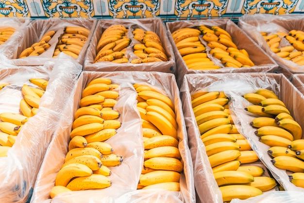 Caixas cheias de bananas amarelas maduras