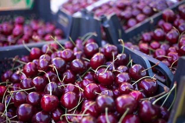 Caixas com cerejas vermelhas frescas, contador do vendedor de frutas e legumes, mercado do fazendeiro