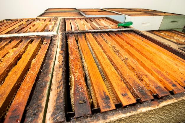 Caixas de favo de mel empilhado favo de mel