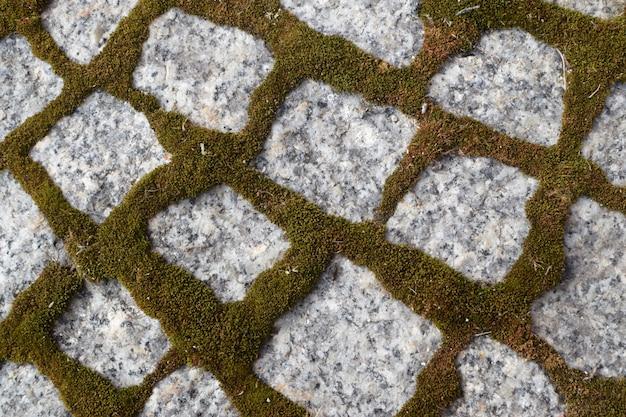 Calçada de granito com musgo