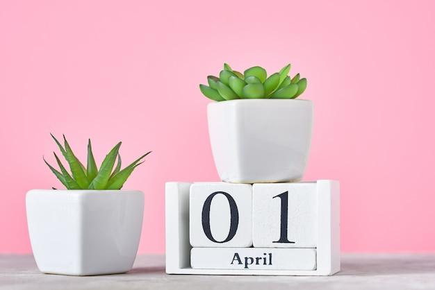 Calendário de blocos de madeira com data 1º de abril e planta em calendário rosa