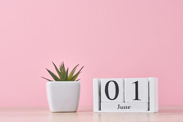 Calendário de blocos de madeira com data 1 de junho e planta suculenta em panela no fundo rosa