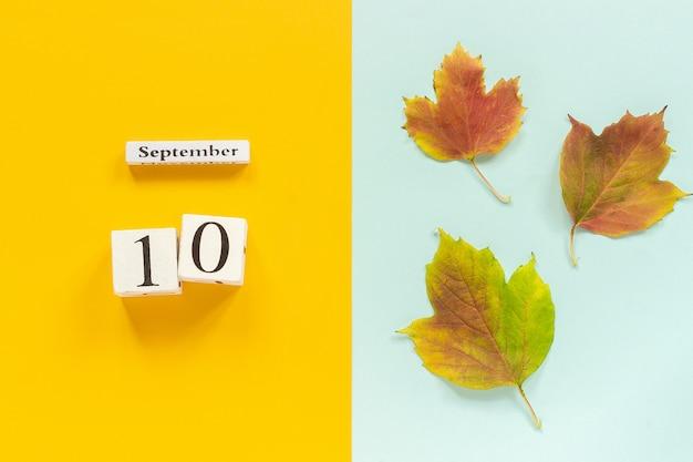 Calendário de madeira 10 de setembro e folhas de outono amarelas