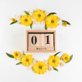 Calendário de madeira mostrando 1 de março decorado com flores de camomila e crisântemo contra o pano de fundo branco