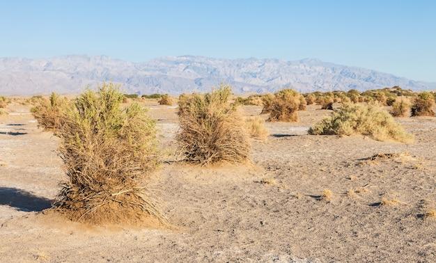 Califórnia, nascer do sol no deserto do vale da morte sob um céu azul