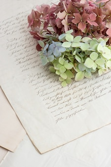 Caligrafia antiga e flores suaves de hortênsia. fundo de estilo vintage romântico. foco seletivo