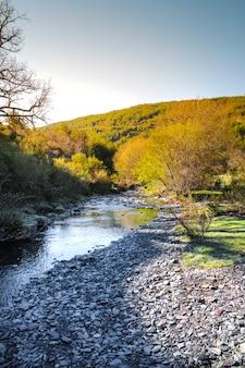 Calmo rio pedregoso