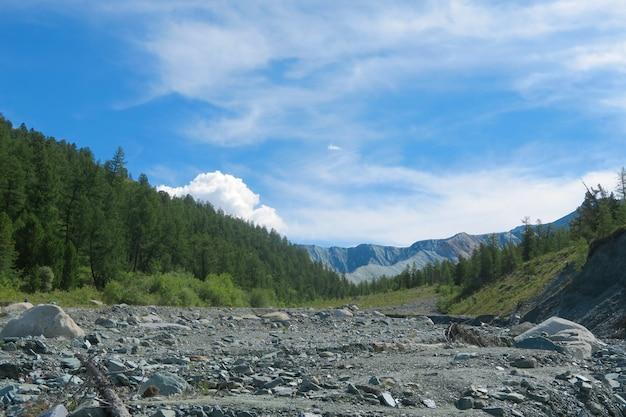 Cama de rio secada da montanha no parque nacional de belukha. vale de yarloo. montanhas altai.