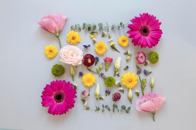Camada plana com variedade de flores lindas