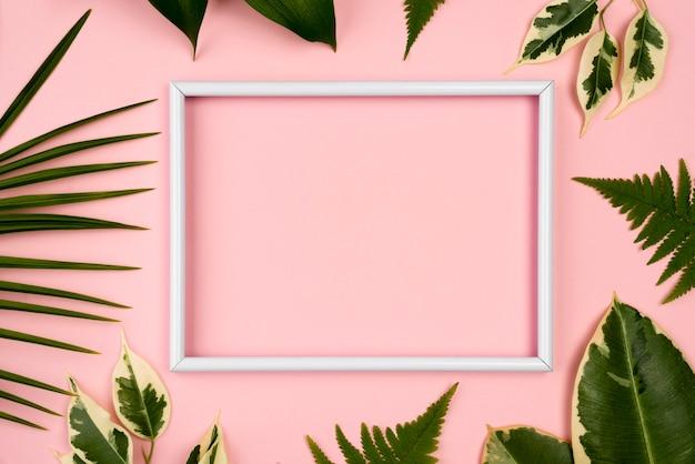 Camada plana das folhas da planta com espaço de cópia e moldura