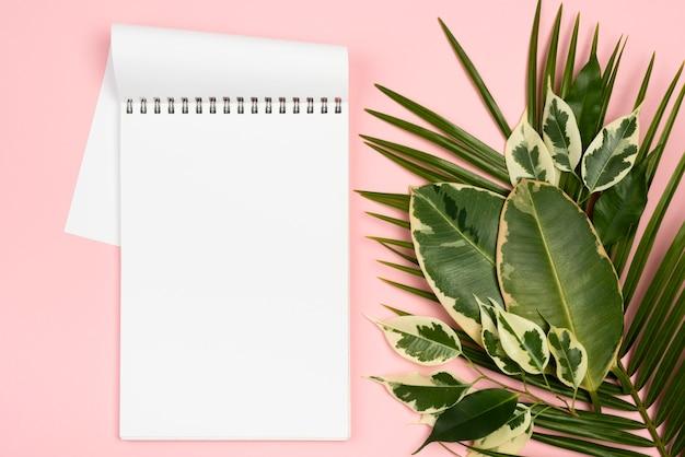 Camada plana de diferentes folhas de plantas com caderno