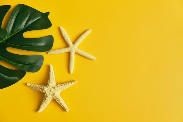Camada plana de folha monstera com estrelas do mar