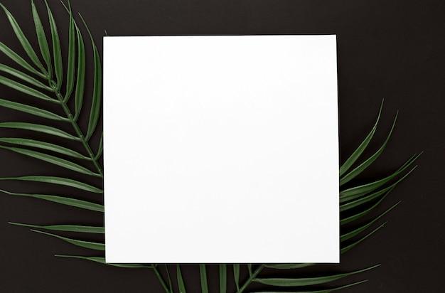 Camada plana de folhas finas de plantas com espaço de cópia