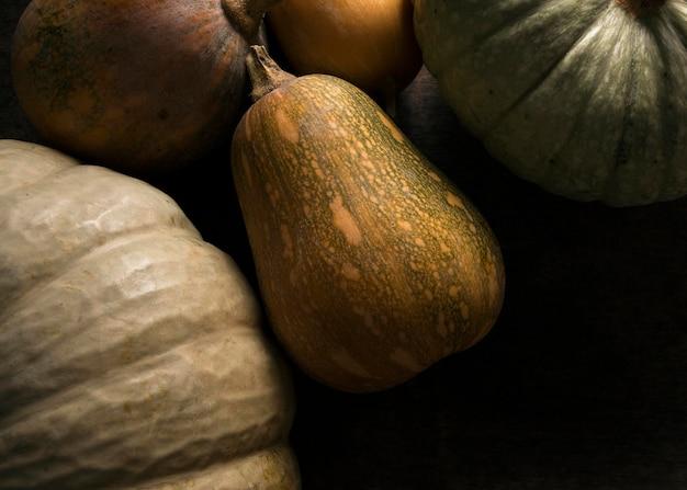 Camada plana de variedade de abóbora de outono