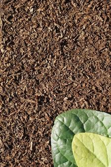 Camada plana de verde de tabaco, folha amarela em folha de tabaco de corte a seco como plano de fundo com espaço de cópia em estilo minimalista, modelo para letras, texto ou seu design