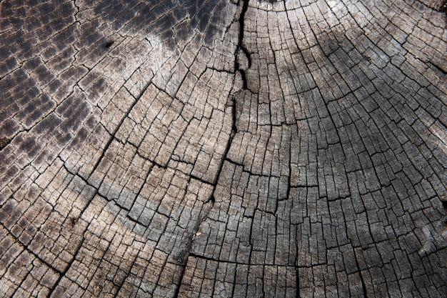 Camadas de toras de madeira grunge com textura de fundo