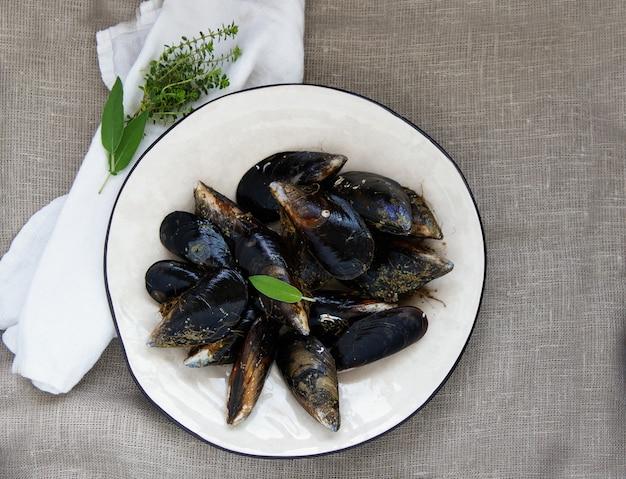 Camarão mantis fresco, catshark, caranguejo