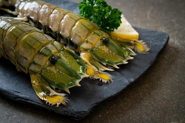 Camarão mantis fresco com limão no quadro negro