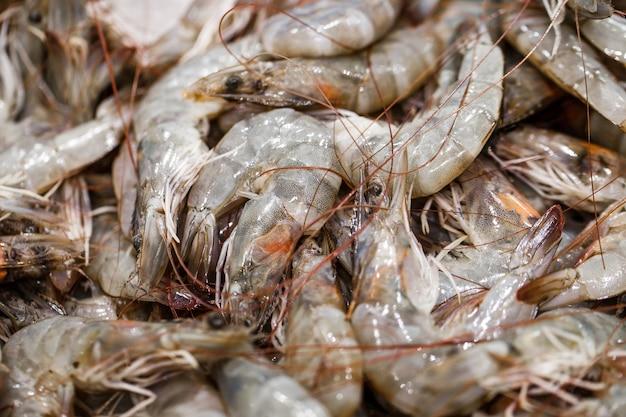 Camarões frescos, camarões crus a granel no mercado de peixes