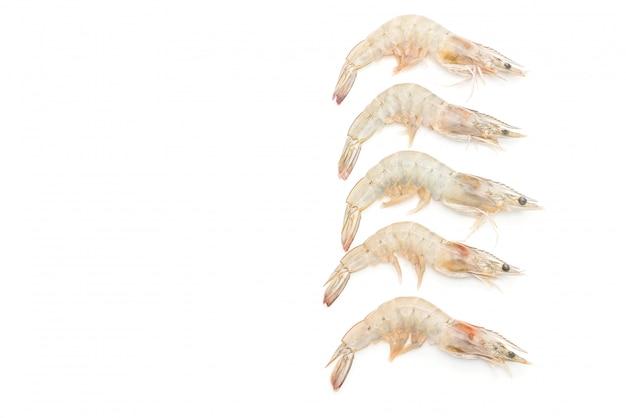 Camarões frescos ou camarões crus