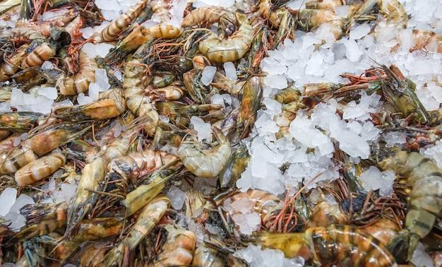 Camarões tigre no gelo, muitos crus frescos e inteiros resfriados, no mercado de peixes.