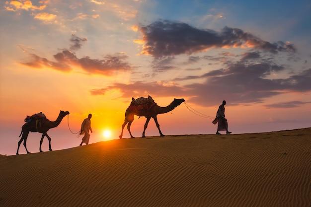 Cameleiros indianos camelo motorista com silhuetas de camelo nas dunas na sunset. jaisalmer, rajasthan, índia