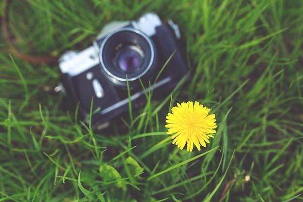 Câmera antiga na grama