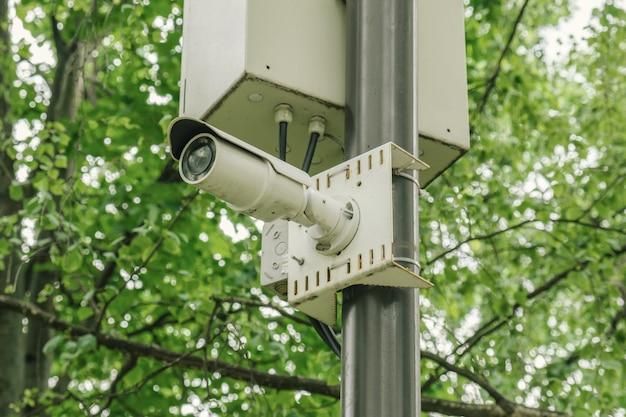 Câmera cctv branca pequena em um poste de luz em um parque da cidade contra galhos de uma árvore verde. segurança, vigilância por vídeo, reconhecimento facial.
