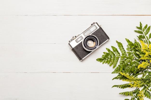 Câmera de foto retrô e folhas de samambaia
