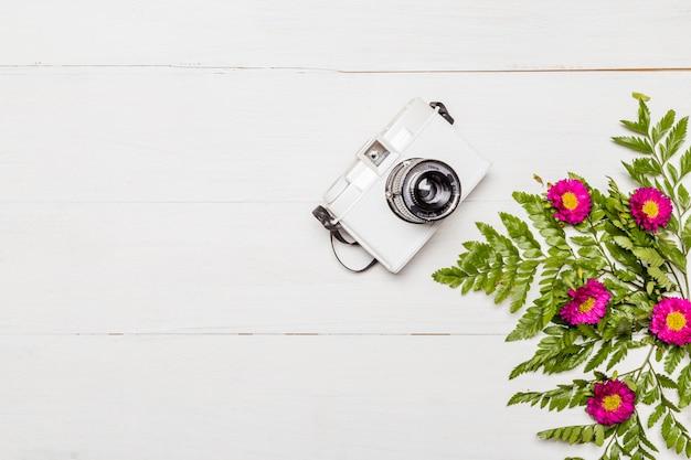Câmera e flores cor de rosa com folhas verdes
