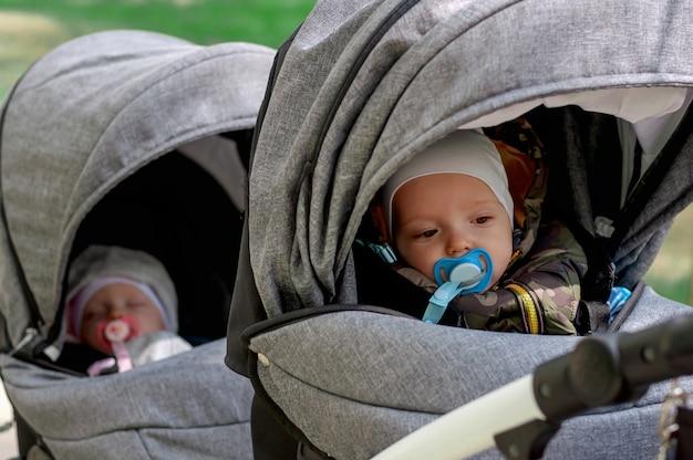 Caminha no parque com duas crianças