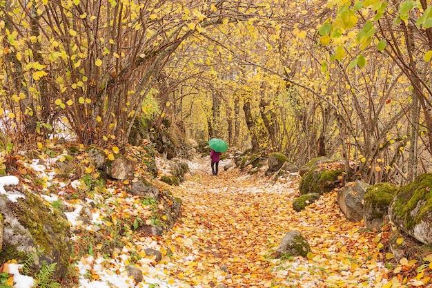 Caminhada de outono com a primeira neve