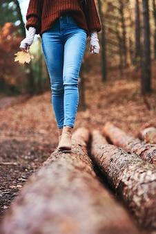 Caminhada de outono por trilha na floresta
