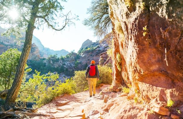 Caminhada no parque nacional de zion
