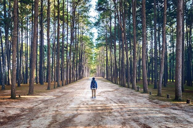 Caminhadas homem com mochila caminhando na floresta.