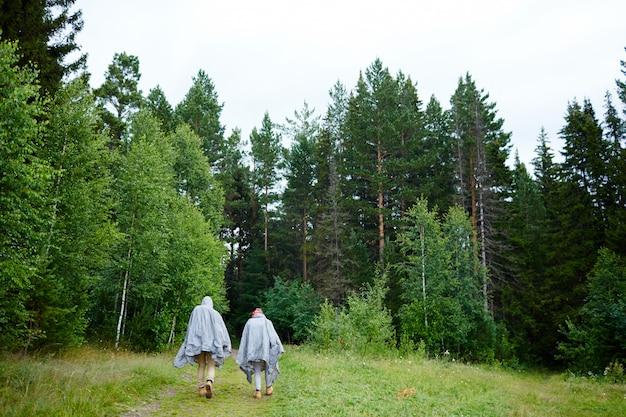 Caminhadas na floresta