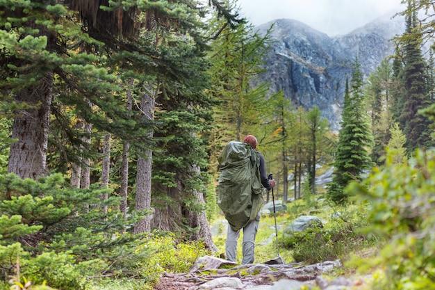 Caminhando o homem nas montanhas canadenses. caminhada é a atividade recreativa popular na américa do norte.