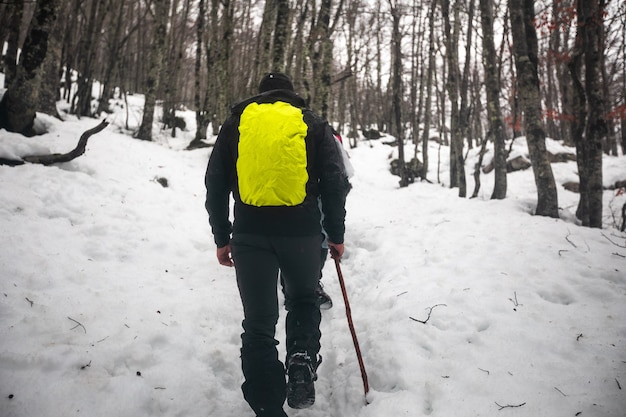 Caminhante caminhando por uma paisagem de inverno