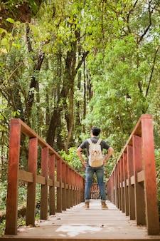 Caminhante na ponte velha