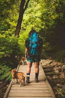 Caminhante que atravessa uma ponte com um cachorro beagle.