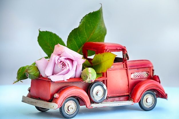 Caminhão com rosa