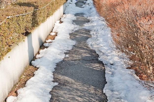 Caminhe caminho no meio de uma neve e uma árvore seca bela paisagem