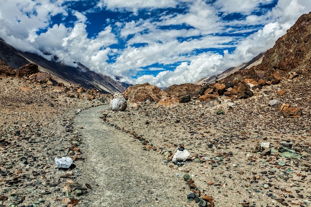 Caminho a pé para o lago sagrado lohat tso no himalaia. vale de nubra, ladakh, índia